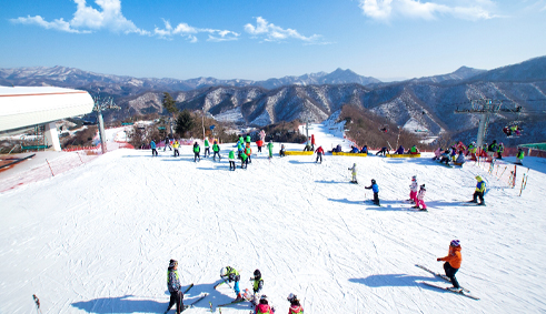 SEOUL -NAMI -LOTTE WORLD -SKI RESORT- 2020